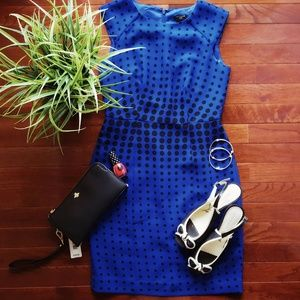 Ann Taylor | Polka Dot Cocktail Dress | Blue